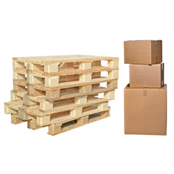 Pallet Repair, Box Sortation & Baler Operations